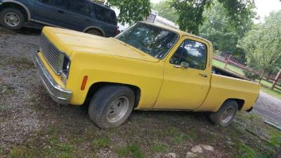 1980 Chevrolet Bonanza