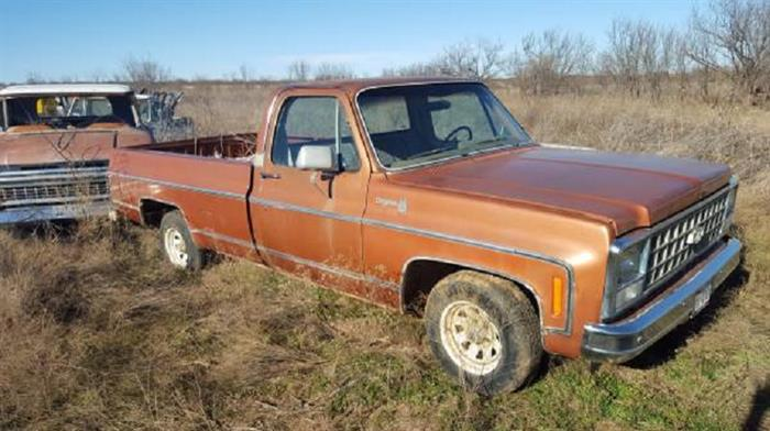 1980 Chevrolet 1/2 Ton