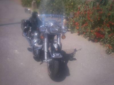 1982 Harley Davidson Flh