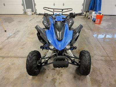 2007 Rapidity ATV