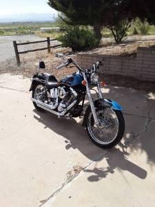 2004 Harley Davidson Custom Softail