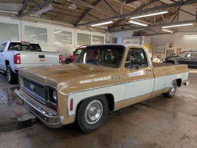 1973 Chevrolet C-series